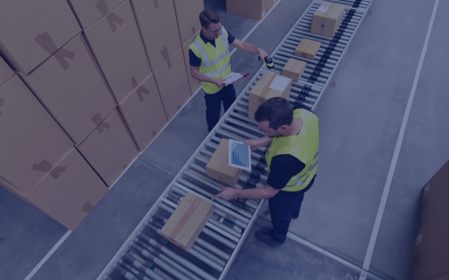 Workers in a warehouse